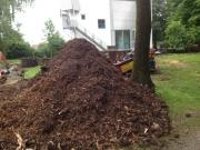 Baumstumpf-Wurzelstock-entfernen-3