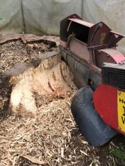 Baumstumpf-Wurzelstock-entfernen-31